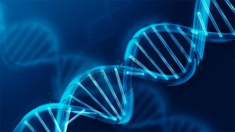 Scoperto il gene che accende il cancro