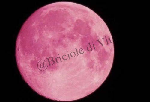 """La """" Luna di Fragola """" da il benvenuto all'Estate"""