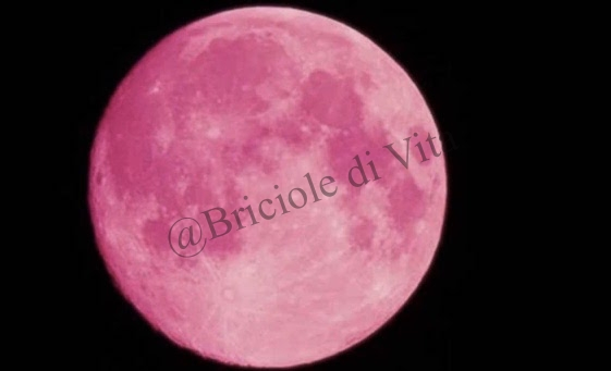 "La "" Luna di Fragola "" da il benvenuto all'Estate"